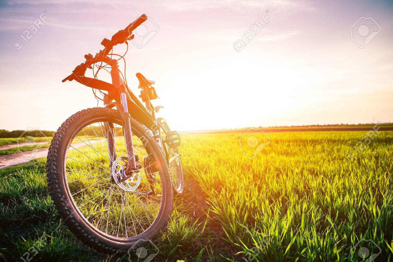 Mountain biking down hill descending fast on bicycle. View from bikers eyes. - 42041041