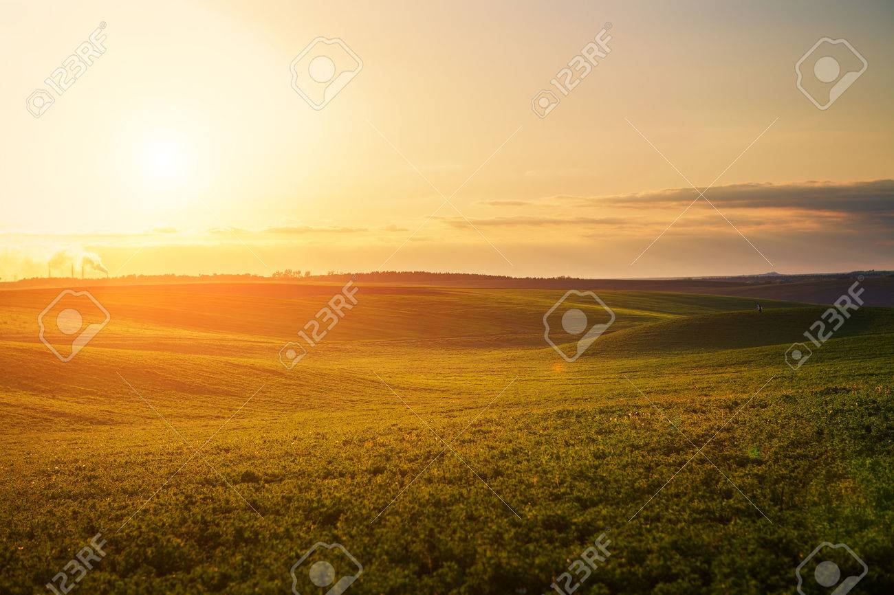 Green Field and Beautiful Sunset Stock Photo - 44862465
