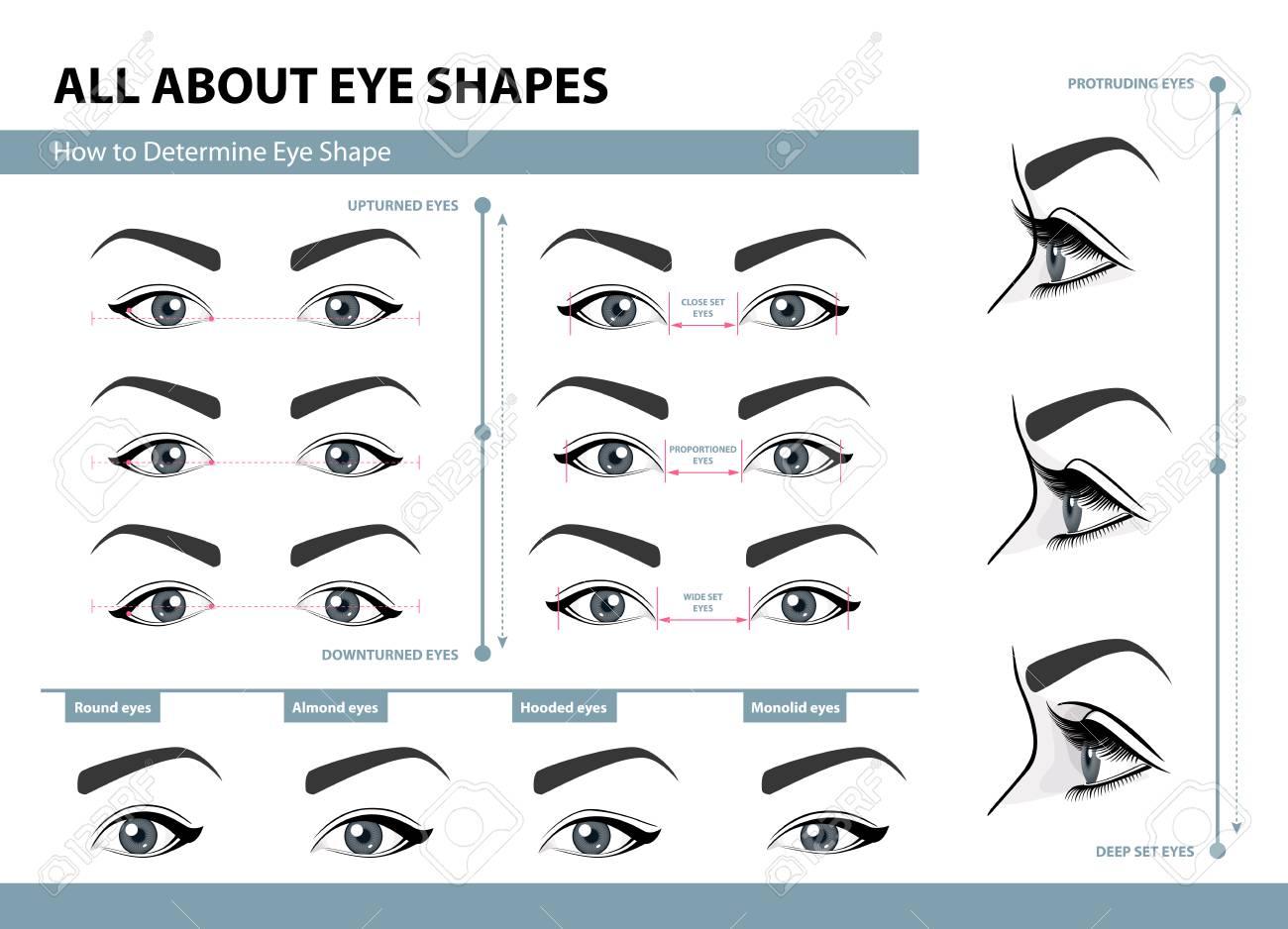 How to determine Eye Shape. - 91169502