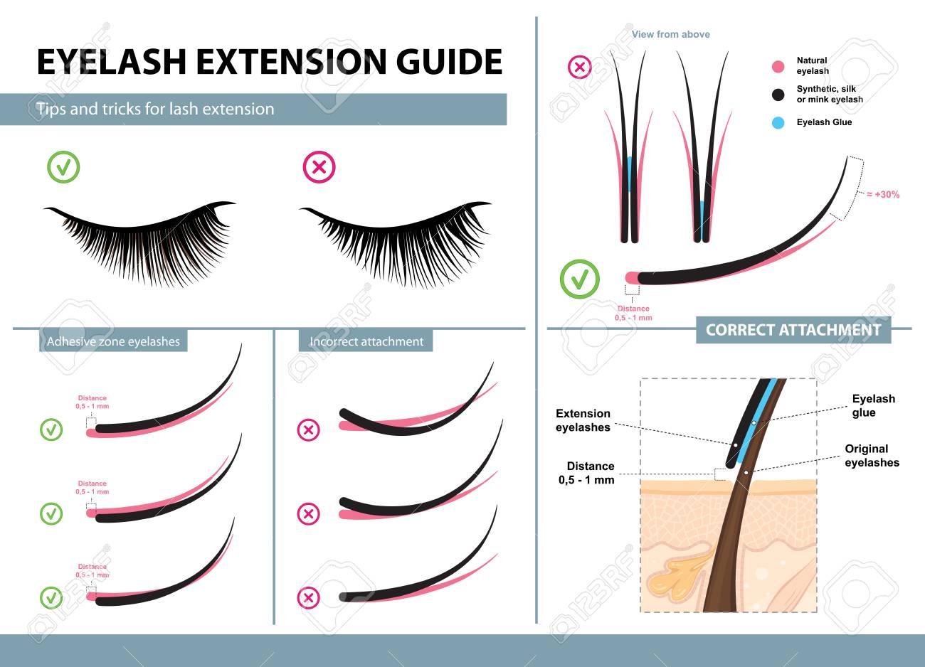 Eyelash extension guide - 94442902