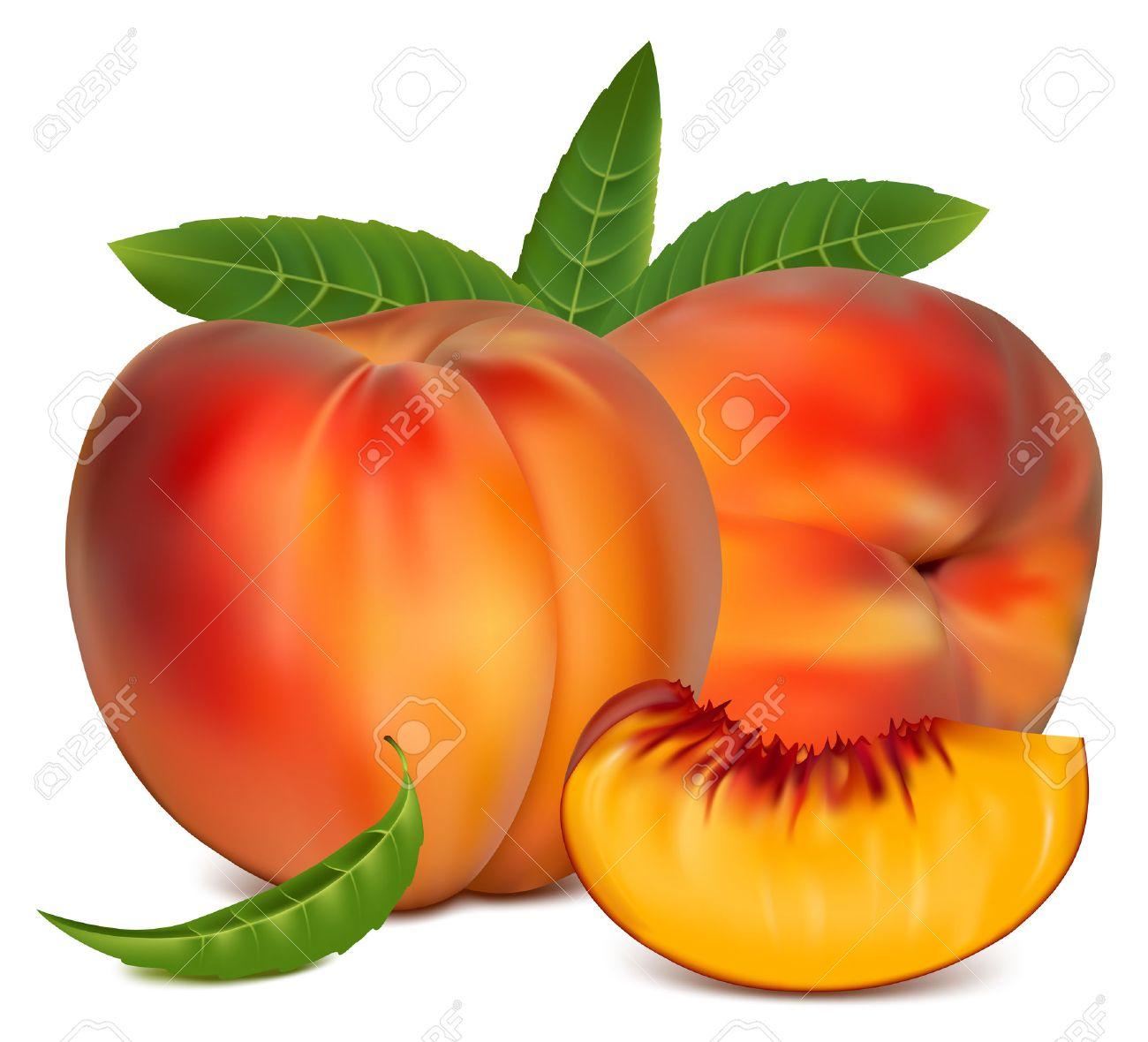 Fruta Vectorial Ilustración Vectorial Fruta