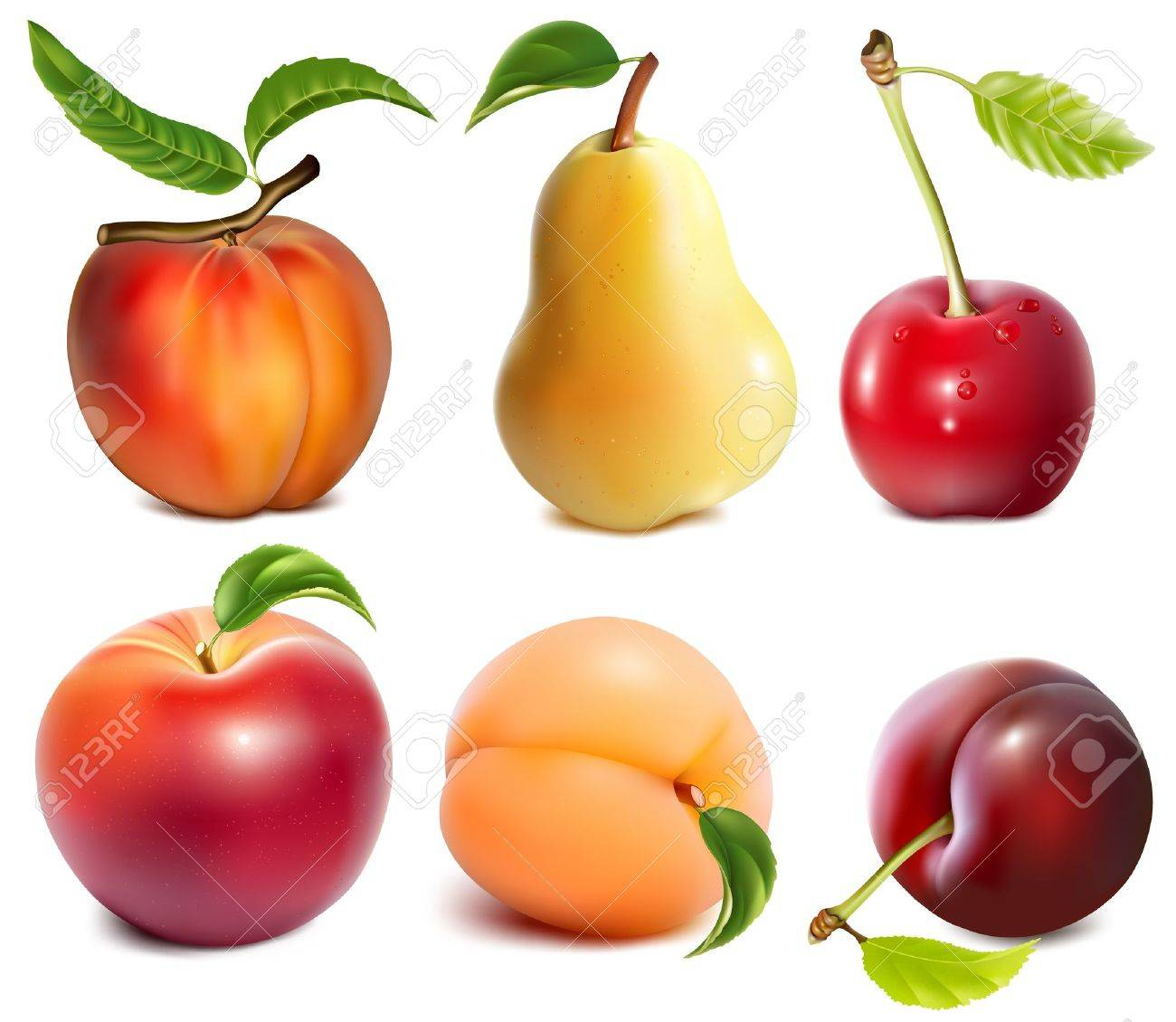 Collection of vector fruits Stock Vector - 18403762