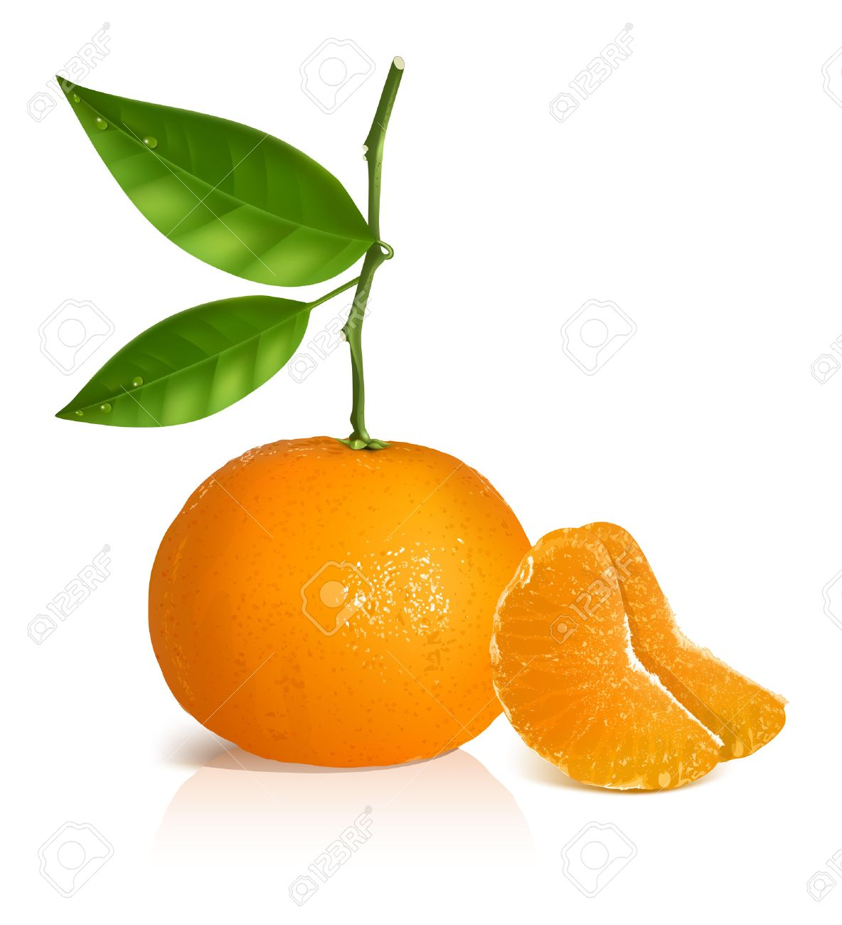 Photo-realistic vector illustration. Fresh tangerine with green leaves and slices. - 26078774