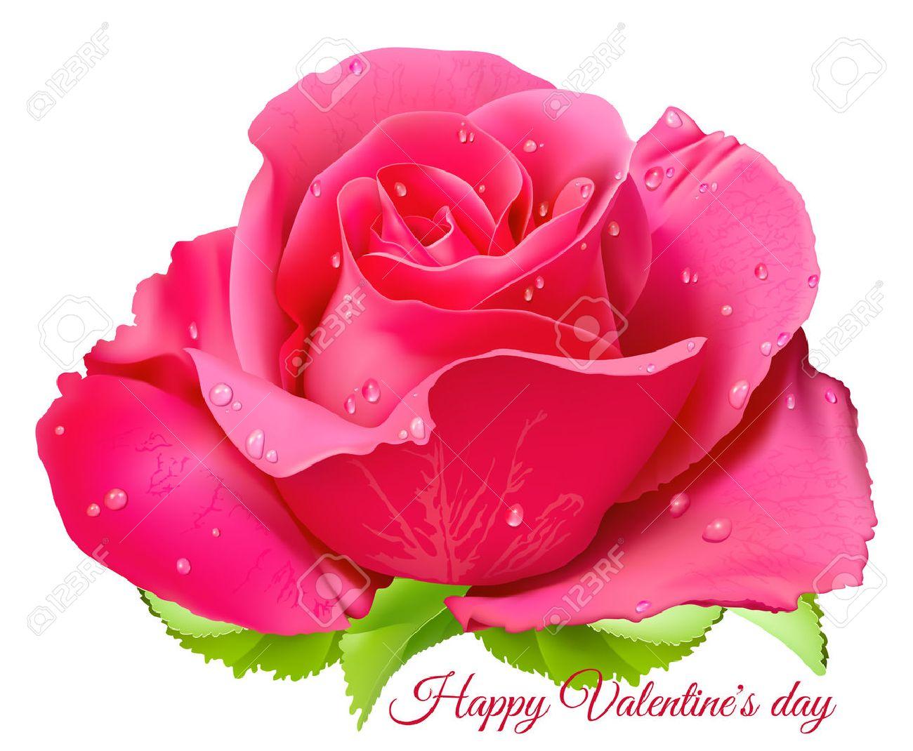 Pink Rose Happy Valentine Day Fully Editable Handmade Mesh