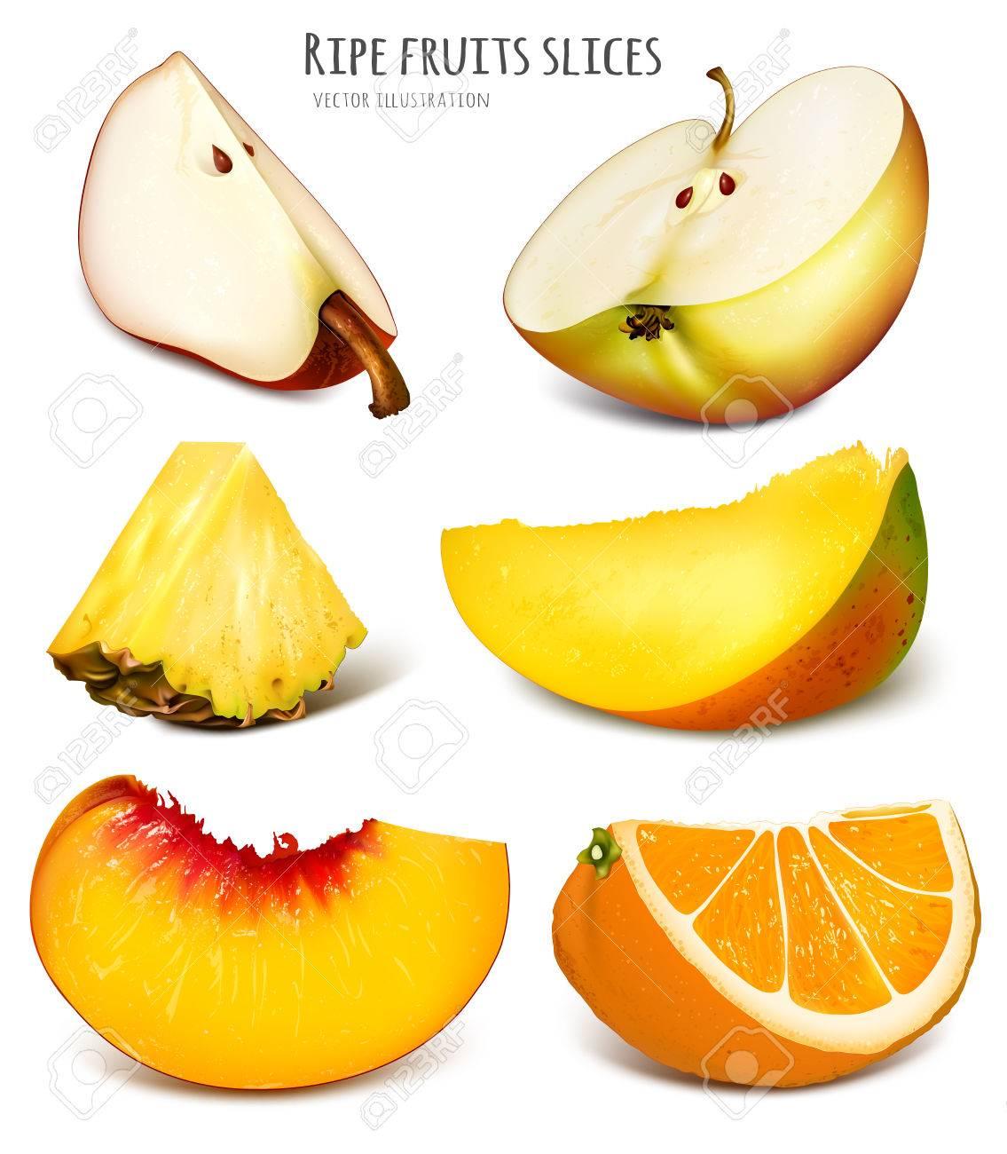slices of fresh fruits fully editable handmade mesh vector