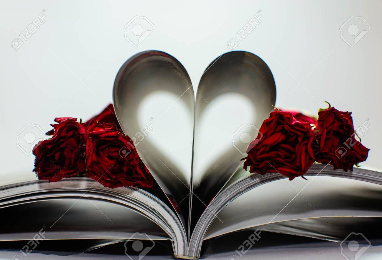 heart from book with rose wither Stock Photo - 17254186