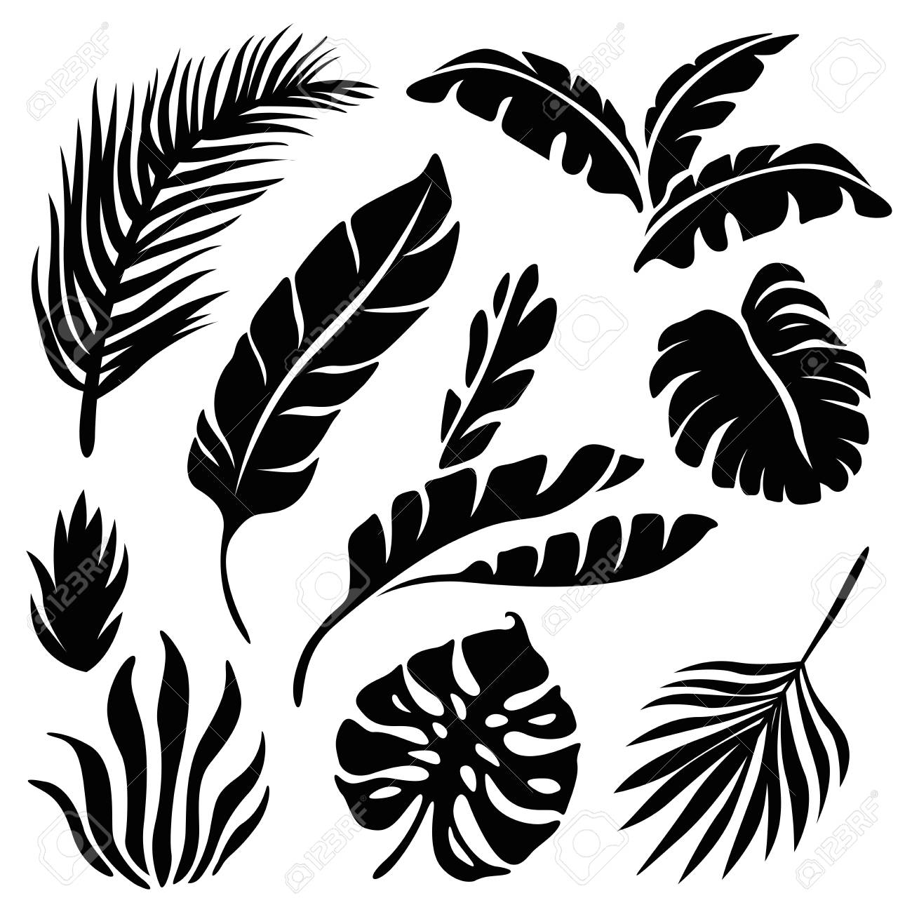 Tropical Leaves Silhouette Set Isolated On A White Background Royalty Free Cliparts Vectors And Stock Illustration Image 107412275 Pikbest has 3796 tropical leaves design images templates for free. tropical leaves silhouette set isolated on a white background