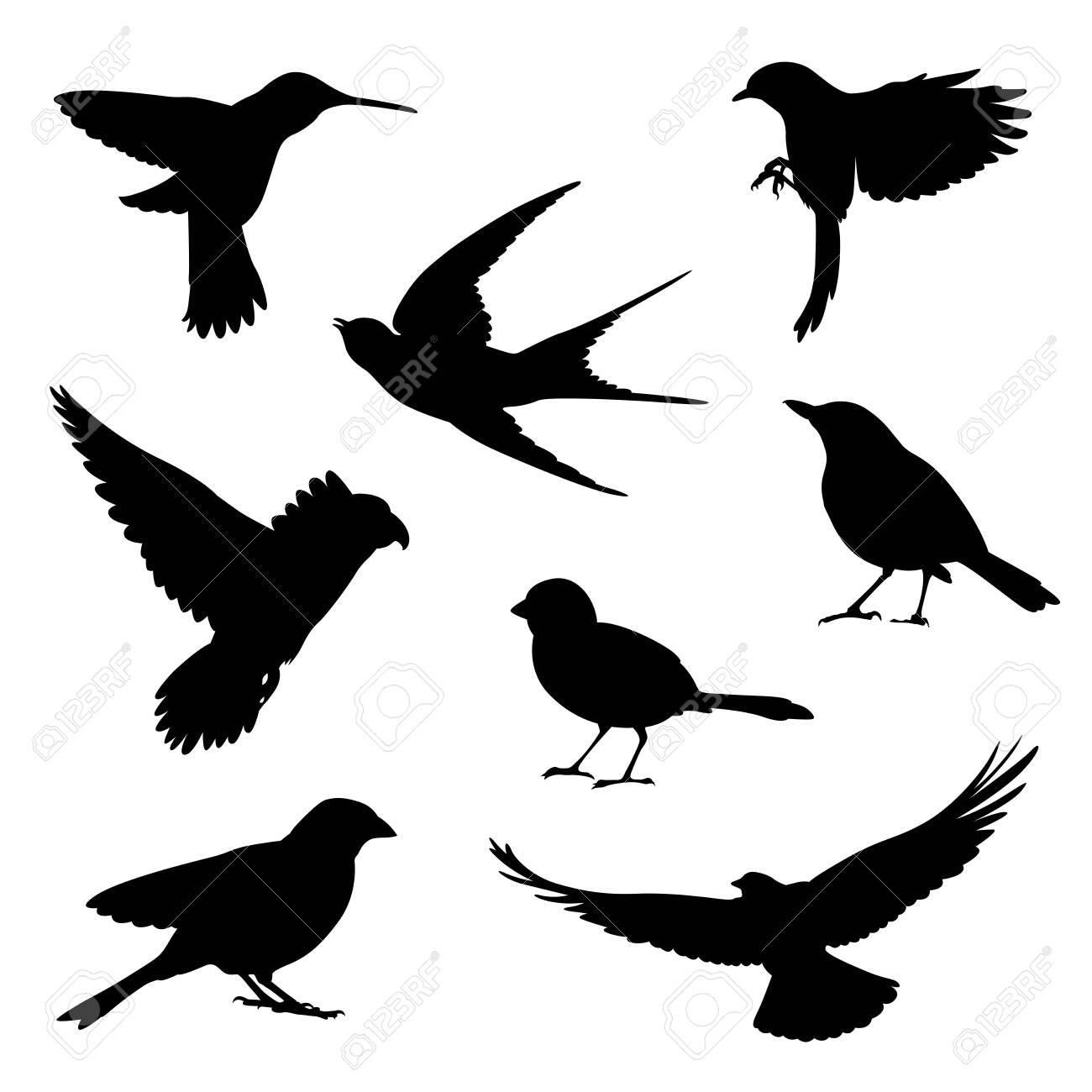 bird silhouette illustration set - 131377045