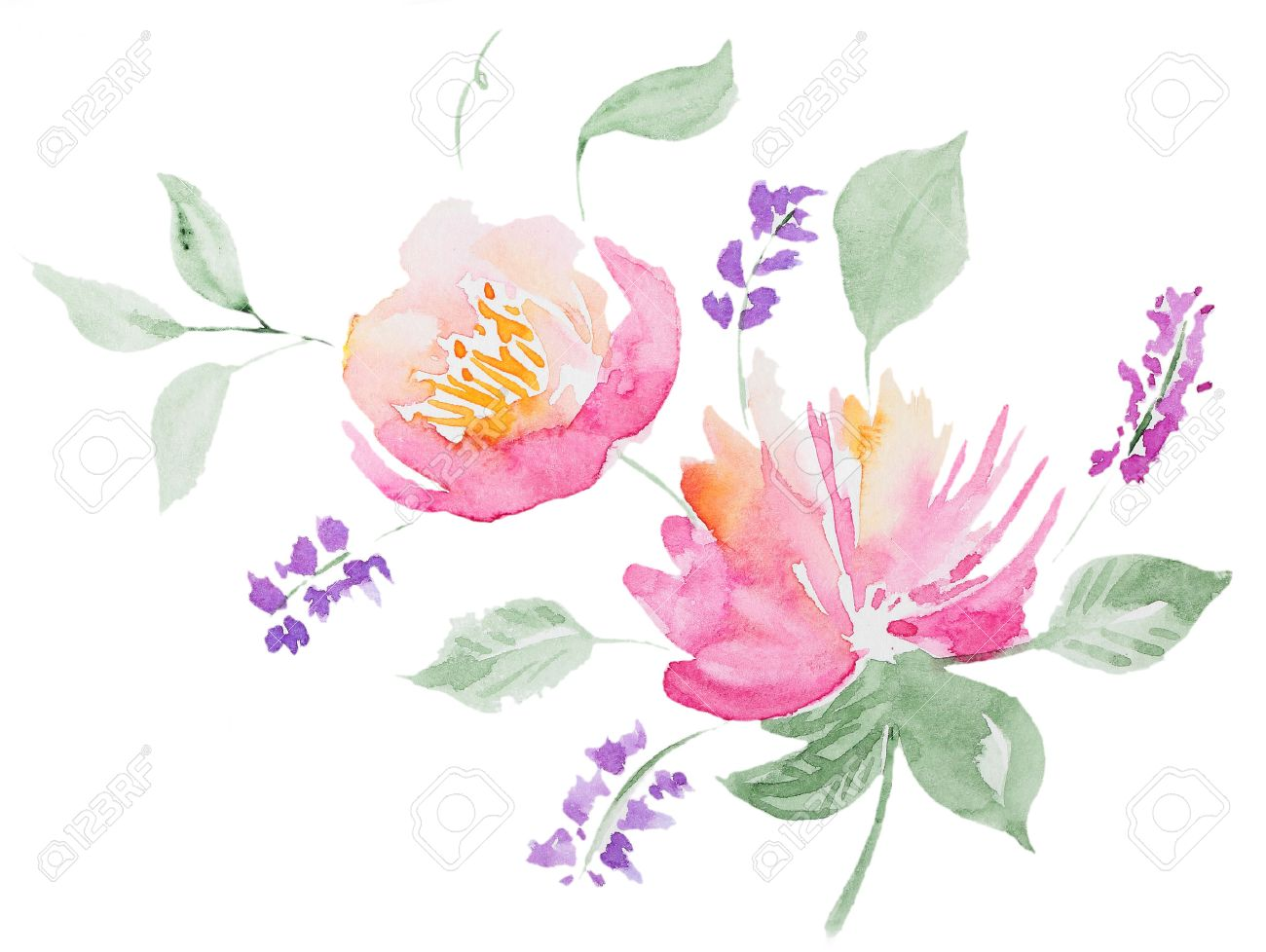 Abstract Watercolor Peonwatercolor Flowers Of Peon On White Background Perfect For Wedding Invitations