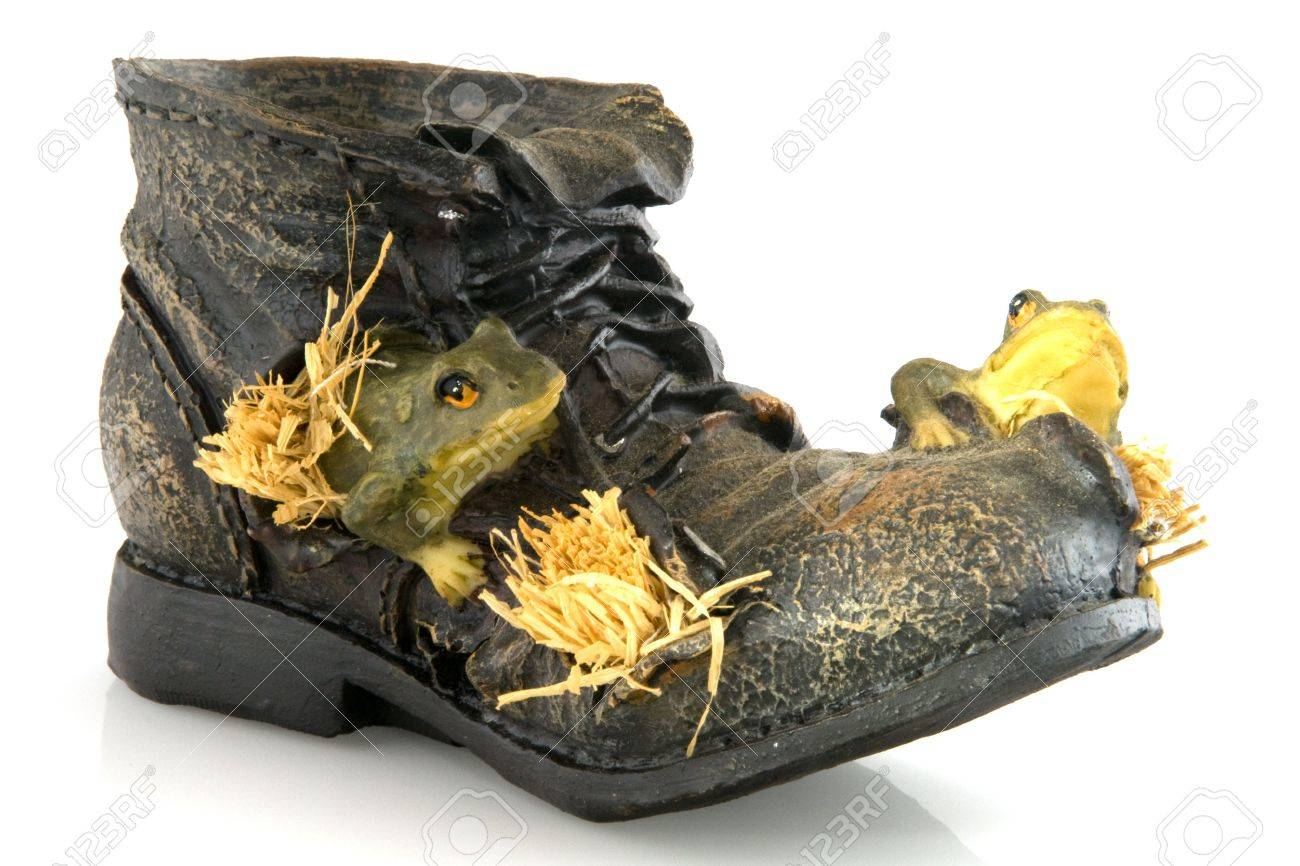 3297576-old-shoe-with-frogs-Stock-Photo.