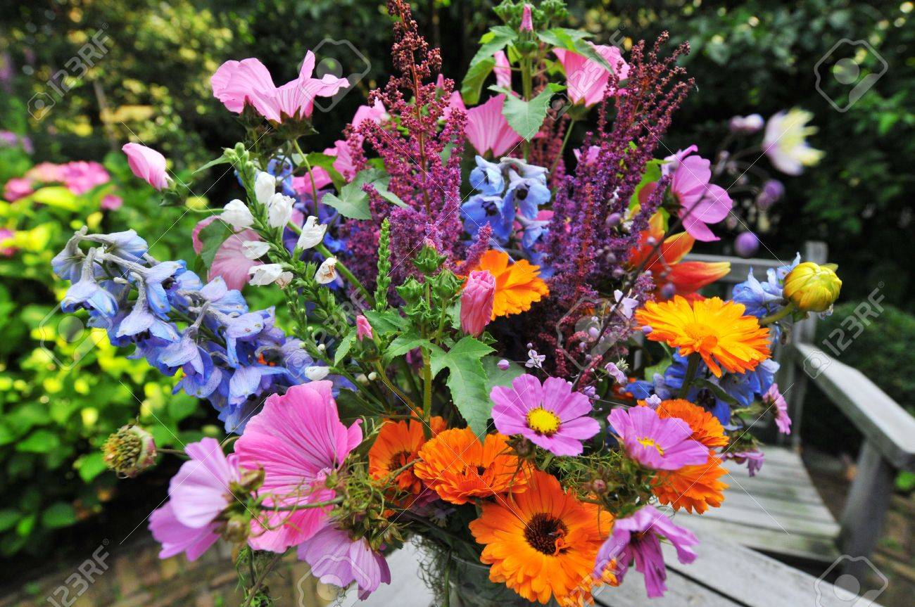 Attractive Buch Of Flowers In The Garden Stock Photo   3362713