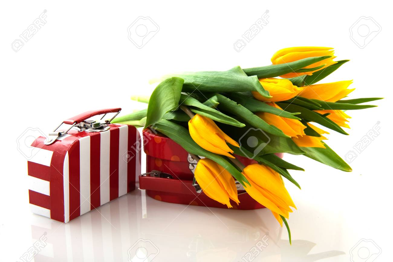 red and white suitcase with yellow tulips Stock Photo - 5878392