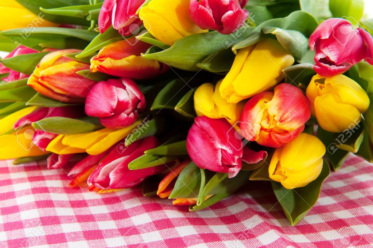 bouquet tulips in spring on checkered background Stock Photo - 6170913