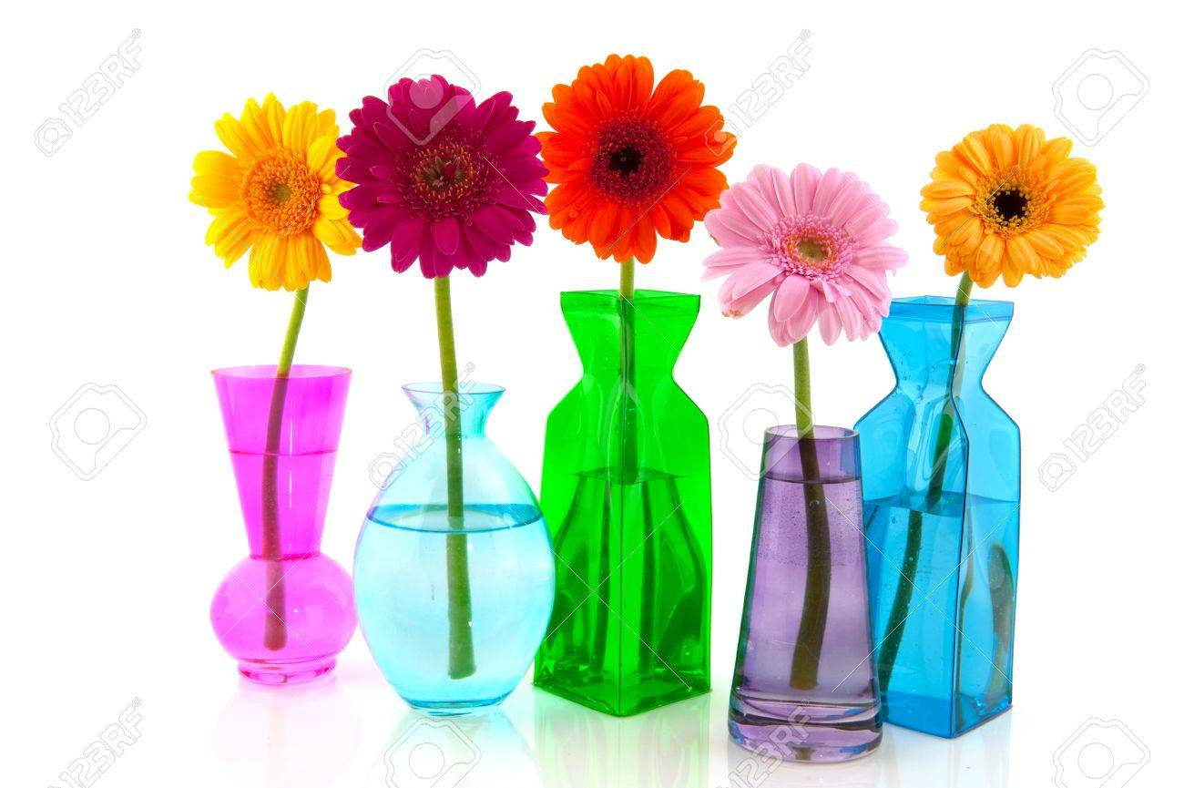 Colorful Gerber flowers in glass modern vases Stock Photo - 6767839