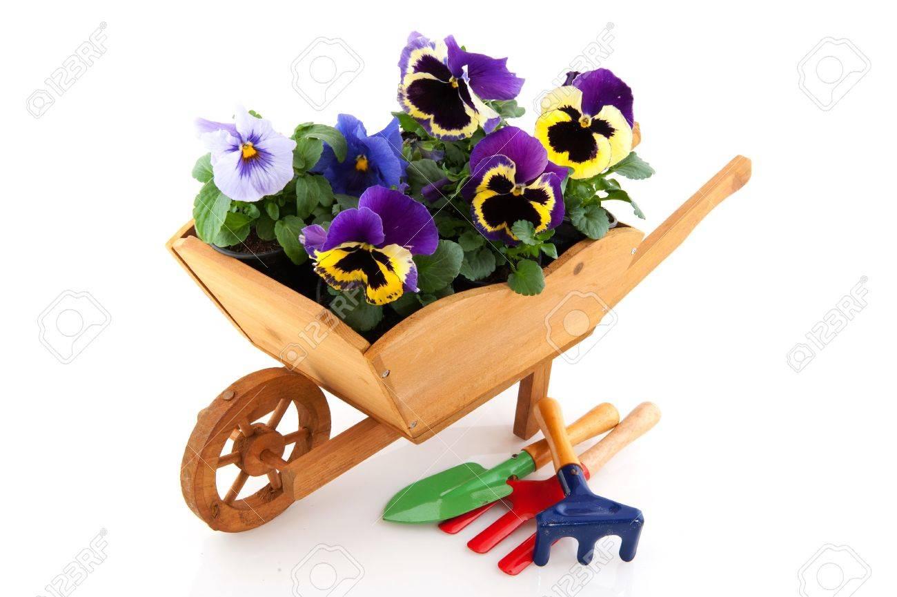 Wooden Wheelbarrows For Plants