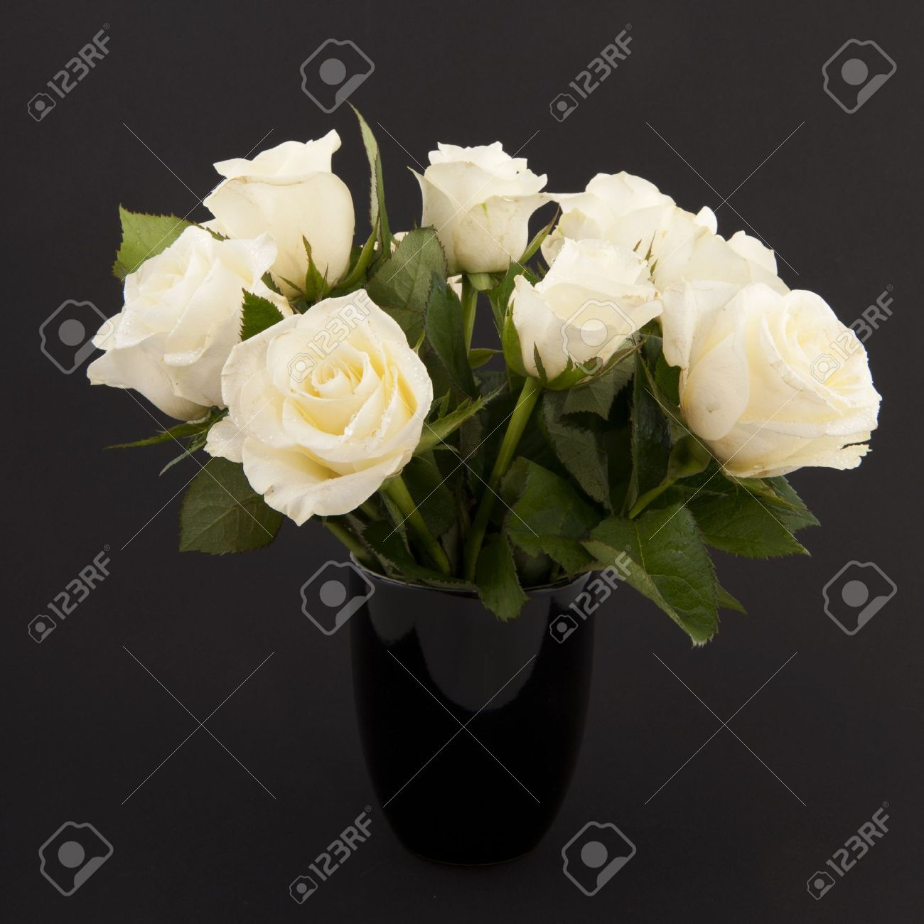 Vase White Roses For A Funeral Isolated On Black Stock Photo