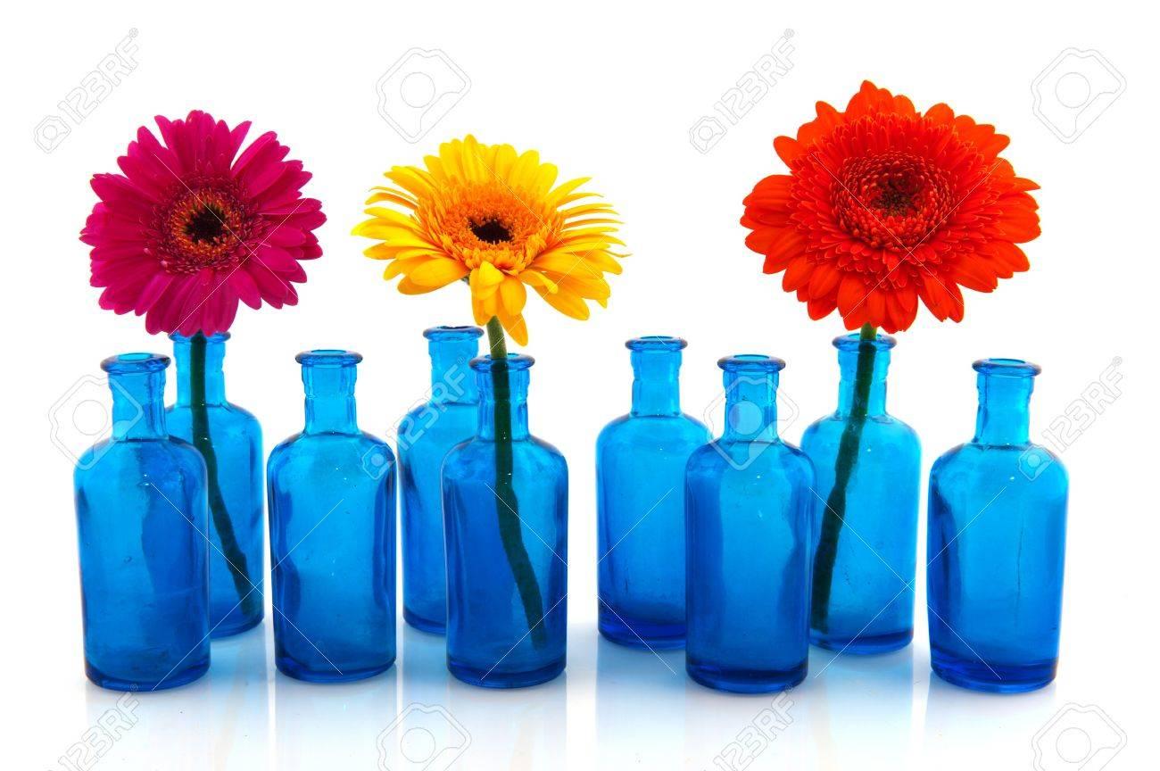 row blue glass vases with colorful flowers isolated over white stock photo