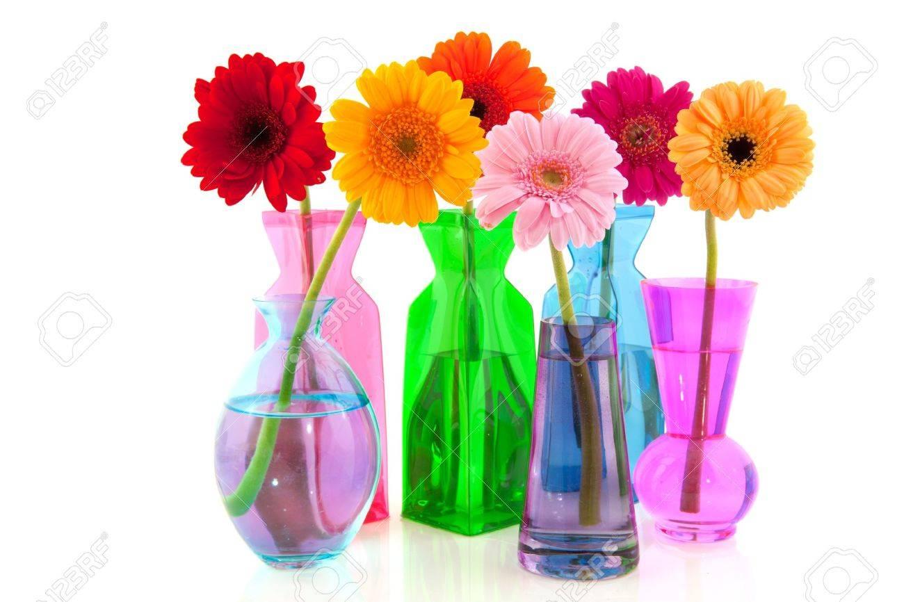 gerber-blumen in glas vasen isolated over white background, Best garten ideen