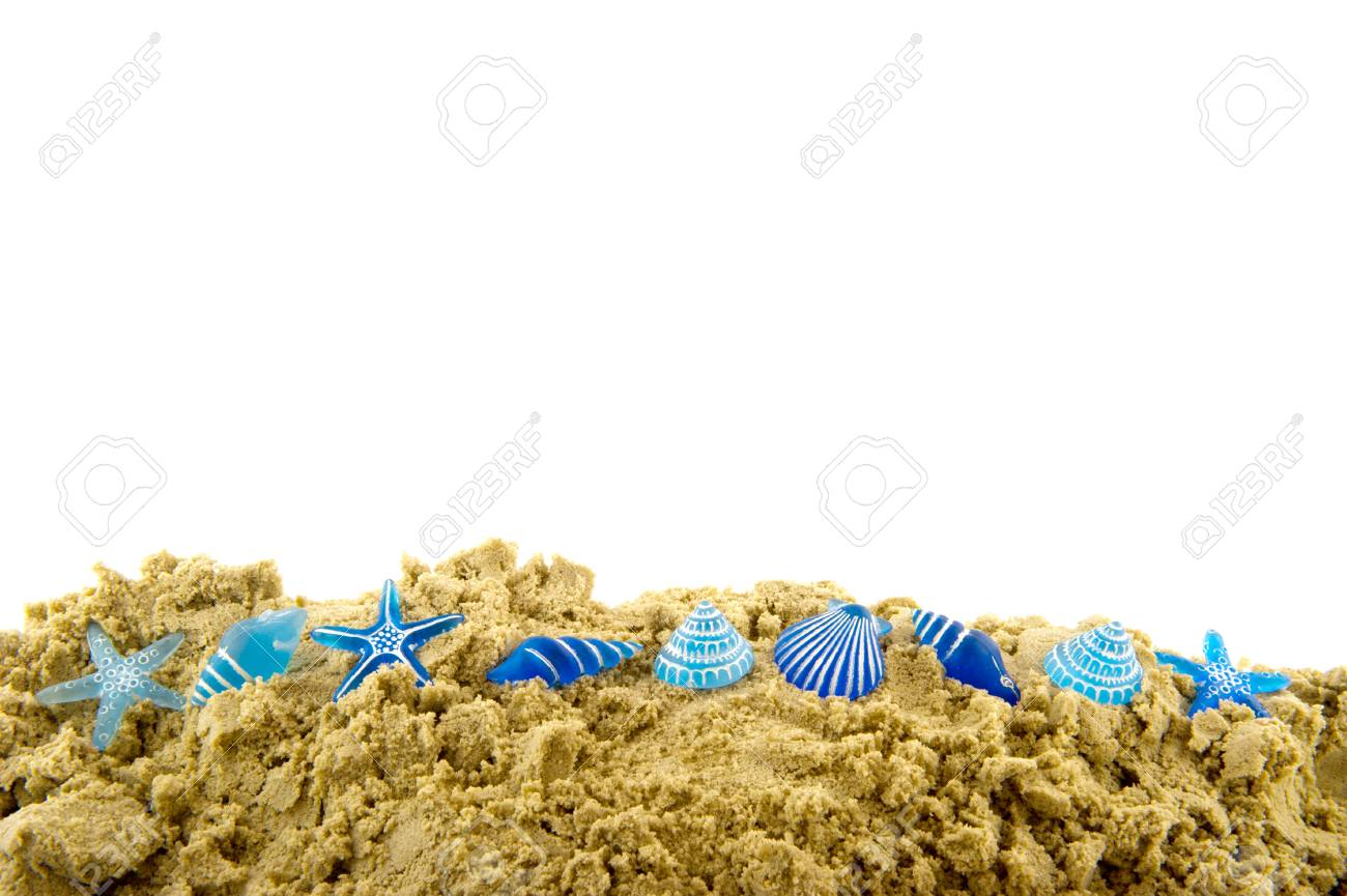 Beach with blue shells in the sand Stock Photo - 8315625