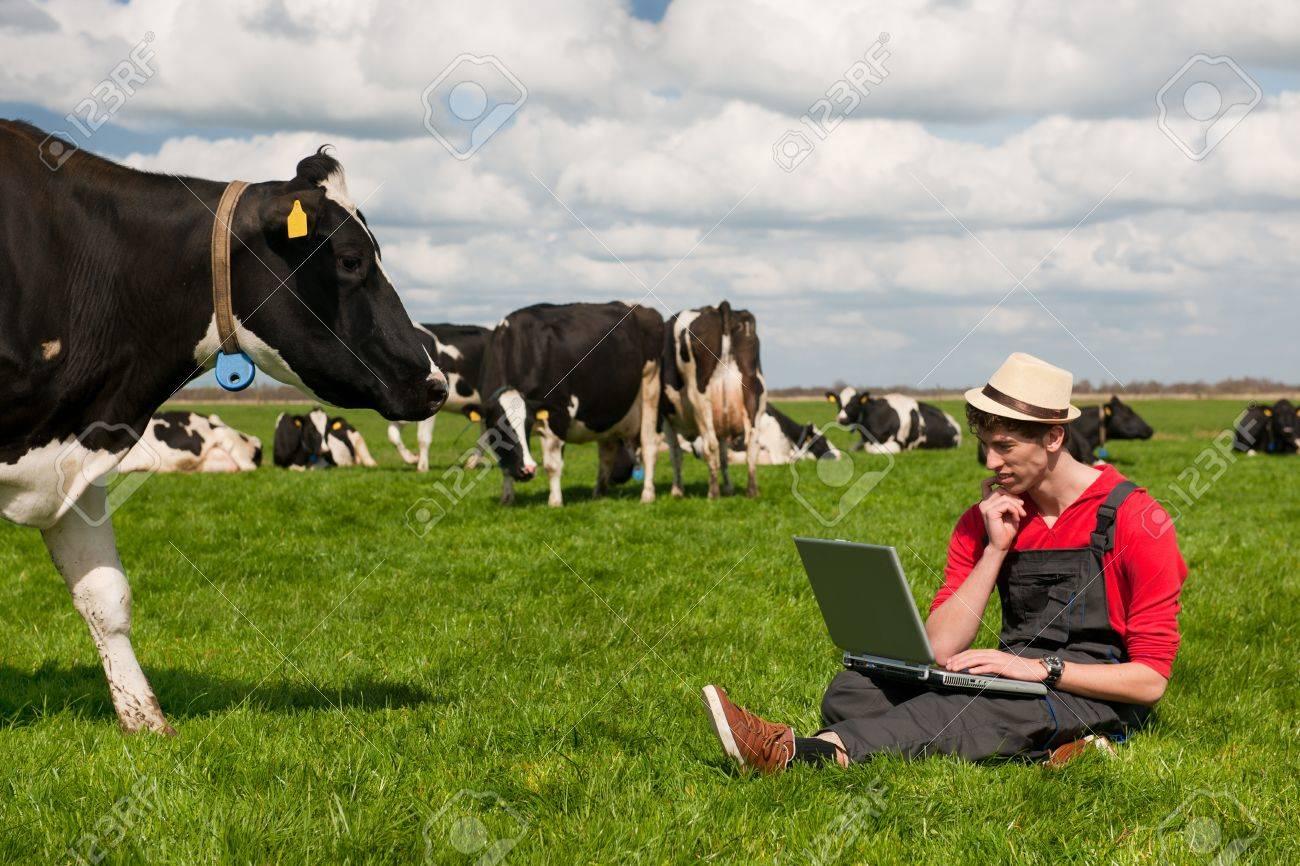 Junger landwirt bei der arbeit  Junger Landwirt Das Arbeiten Mit Laptop In Der Bauernhof-Feld Mit ...