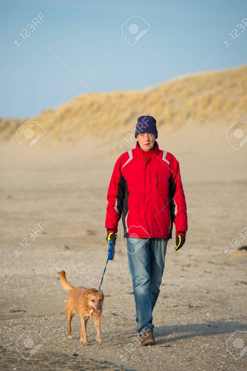 Man walking with dog at the Dutch beach in winter Stock Photo - 19424935