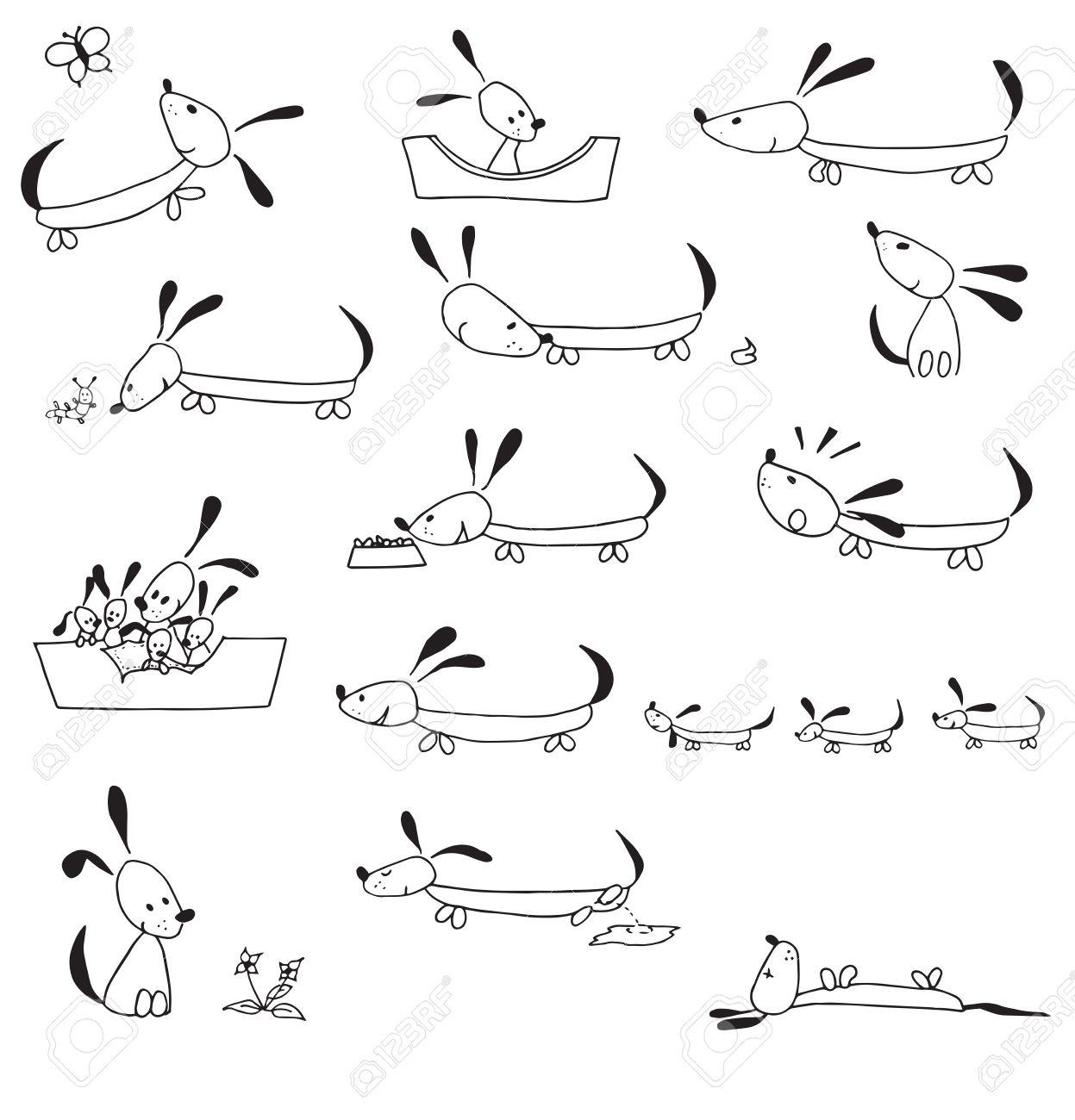 白い背景で隔離されたシンプルなイラストで手描き犬のライフ サイクル