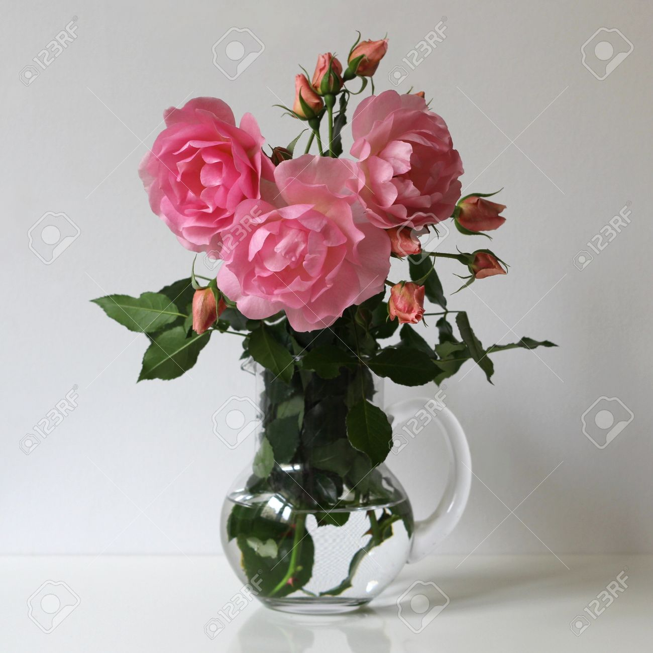 Pink roses in a glass vase on a white background. Floral decoration
