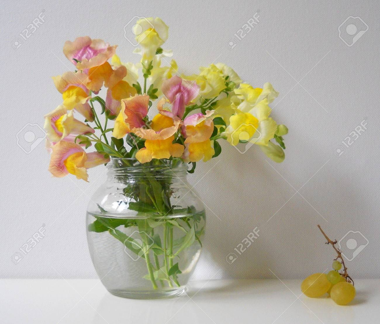 Bouquet Of Snapdragon Flowers In A Vase Spring Floral Decoration