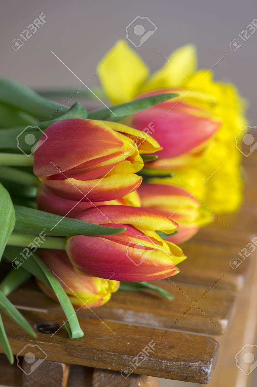 Detail of tulip bouquet ornamental spring flowers yellow red detail of tulip bouquet ornamental spring flowers yellow red flower heads in bloom with mightylinksfo Images