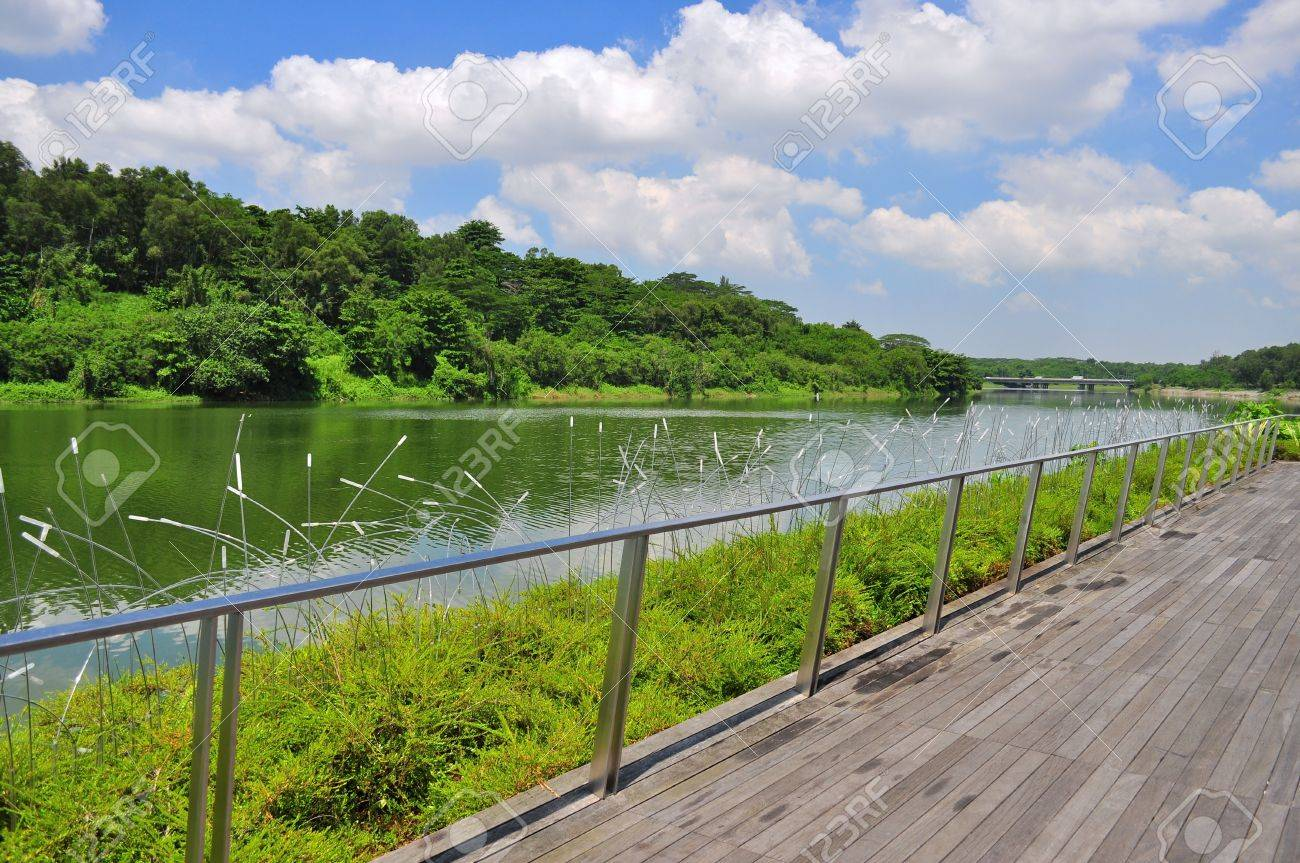 A wooden walkway by the river with a lot of greeneries - Punggol waterway, Singapore - 20314565