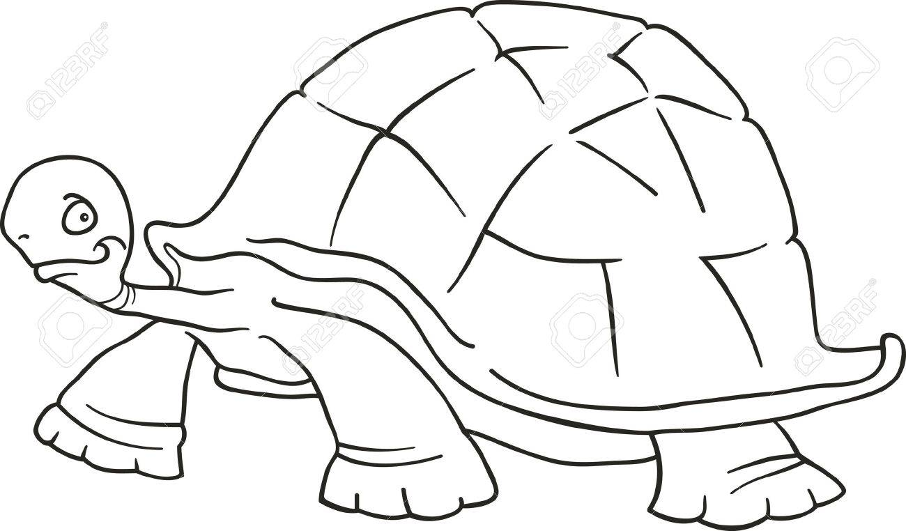 big turtle for coloring book royalty free cliparts vectors and