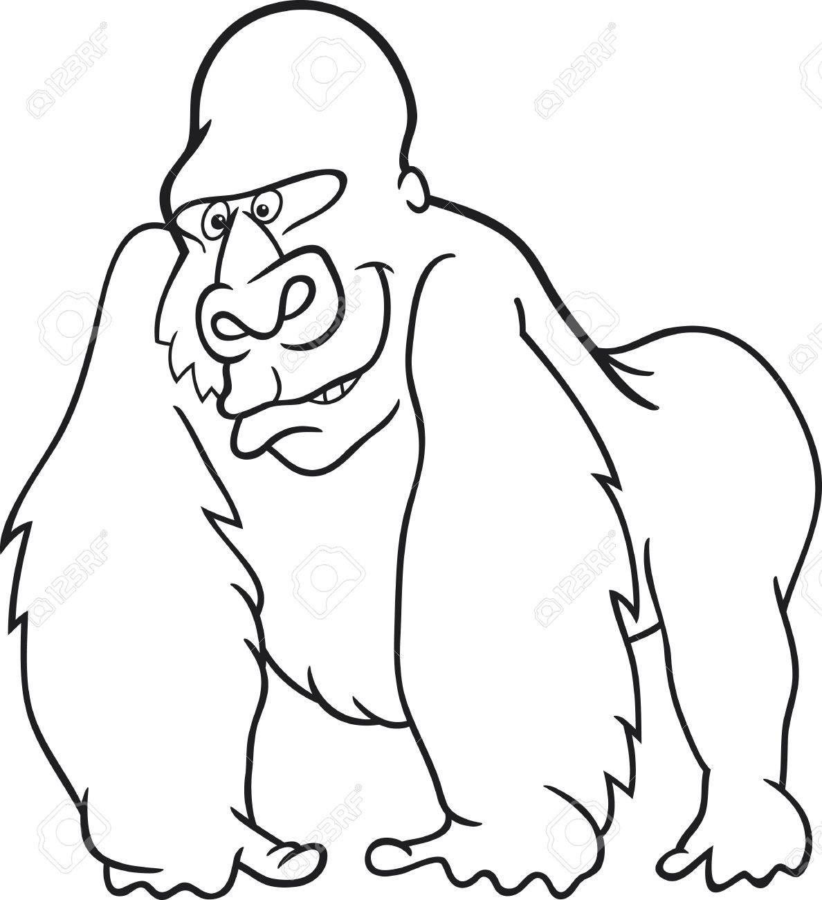 silver gorilla for coloring book royalty free cliparts, vectors ... - Silverback Gorilla Coloring Pages