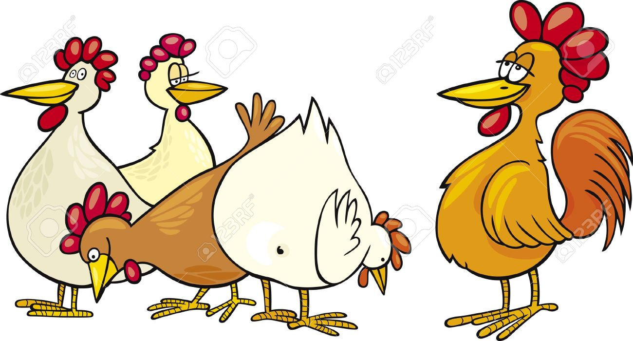 chicken cartoon stock photos u0026 pictures royalty free chicken