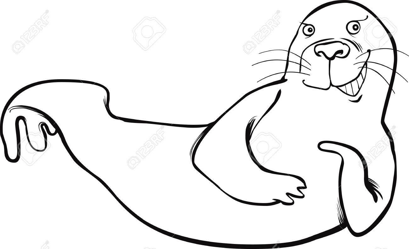 seal coloring