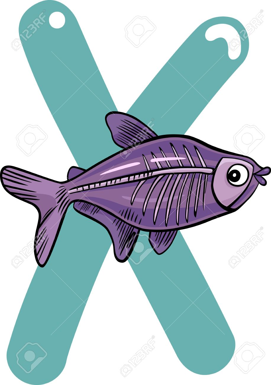 cartoon illustration of X letter for x-ray fish Stock Vector - 13203249