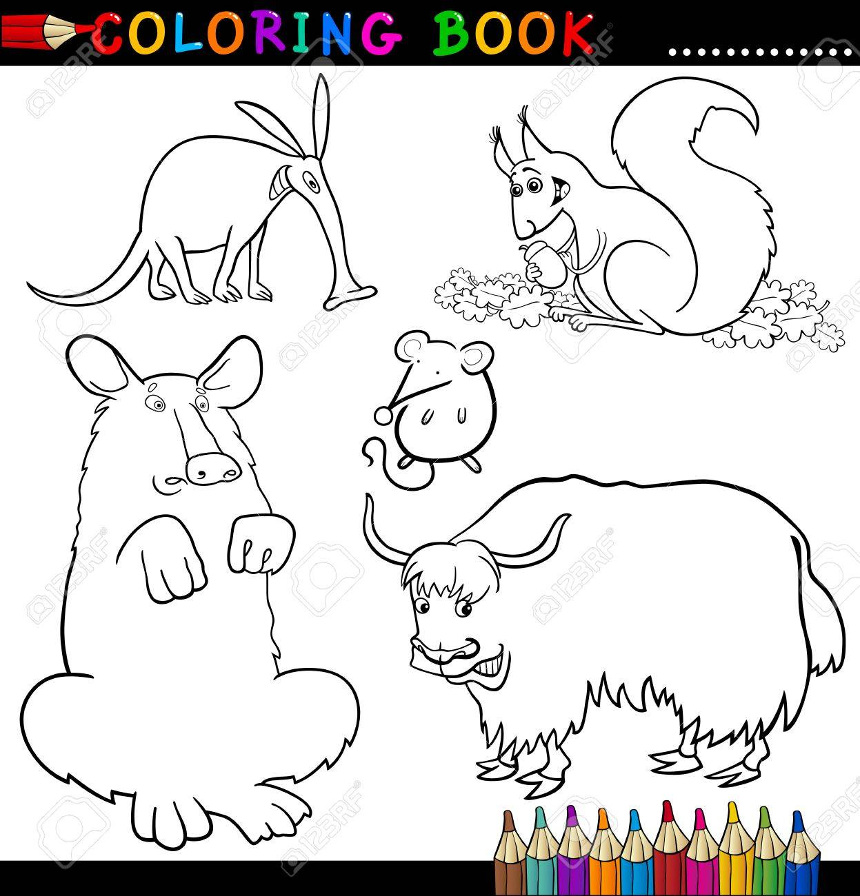 Coloring Book Or Page Cartoon Illustration Of Funny Wild Animals - aardvark animal coloring pages