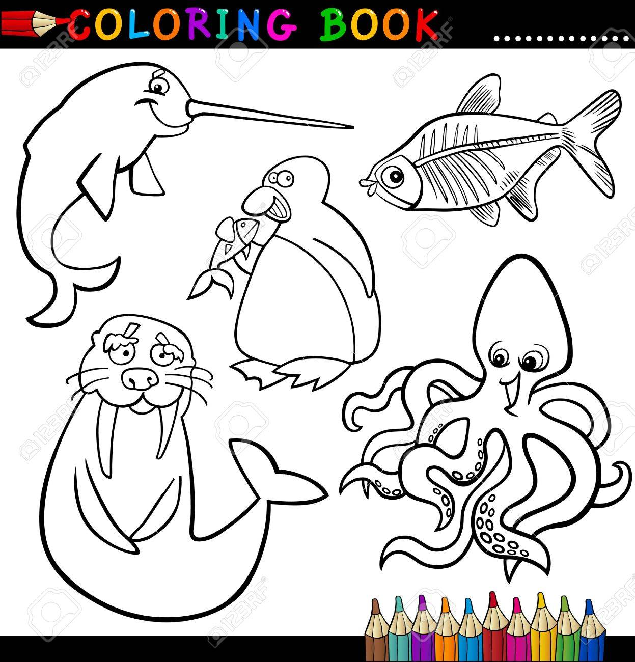 X ray coloring pages - X Ray Cartoon Coloring Book Or Page Cartoon Illustration Of Funny Marine And Polar Animals