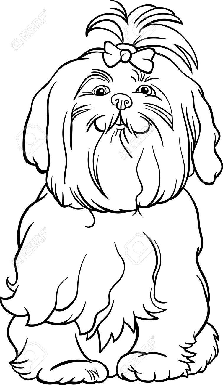 Black and White Cartoon Illustration of Cute Maltese Dog with Bow for Coloring Book Stock Vector - 17210070
