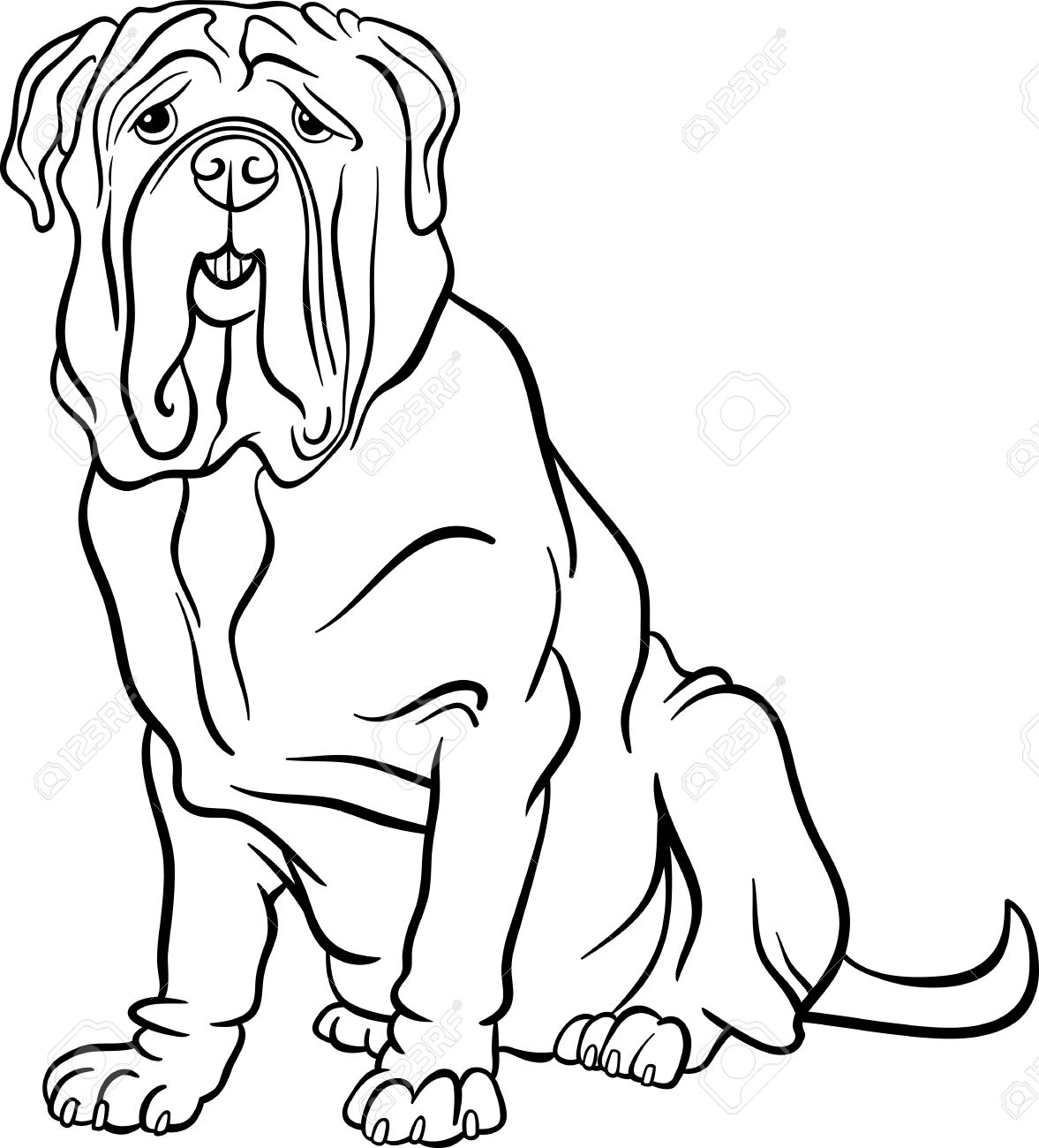 black and white cartoon illustration of cute neapolitan mastiff purebred dog for coloring book stock vector