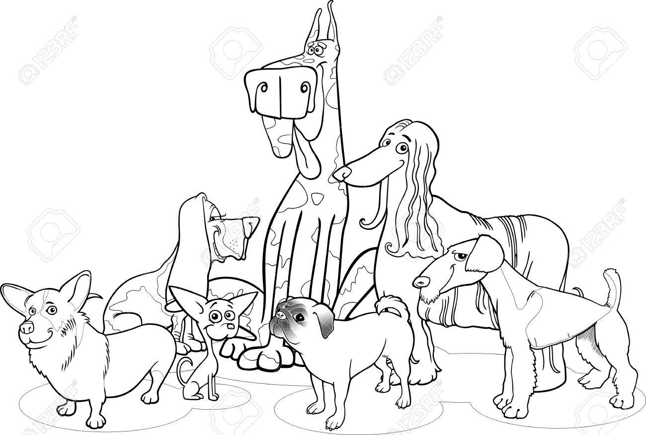 Black and White Cartoon Illustration of Cute Purebred Dogs or Puppies Group for Coloring Book Stock Vector - 17357057
