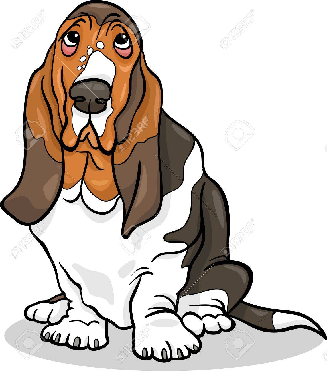 cartoon illustration of cute basset hound purebred dog royalty free rh 123rf com