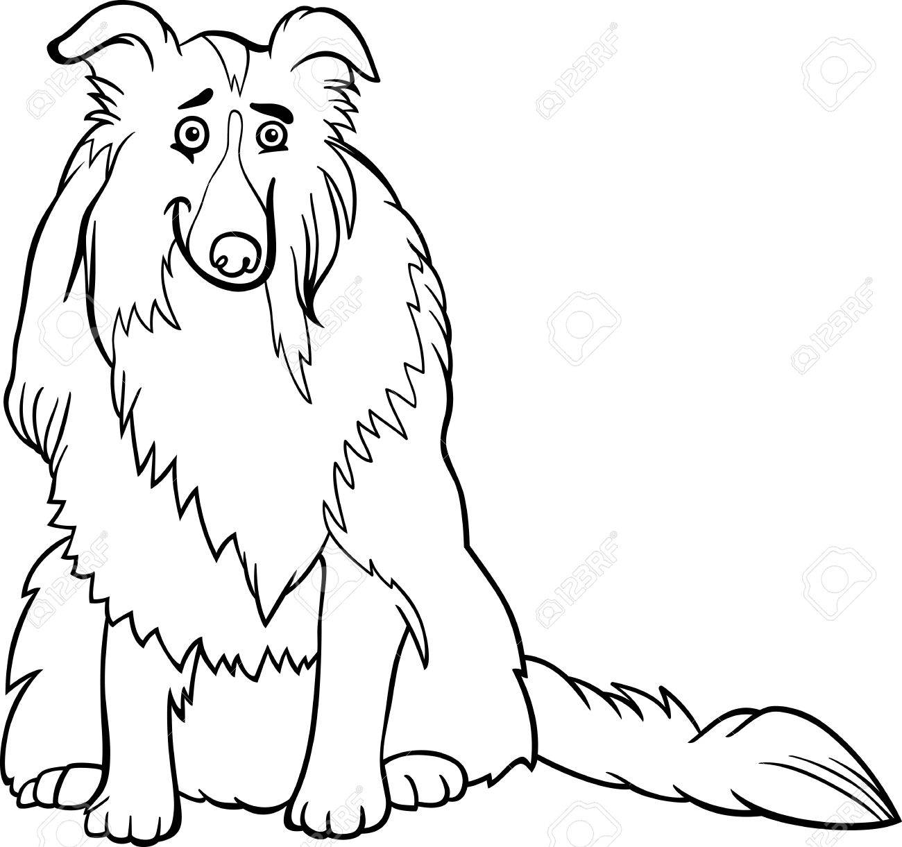 Black and White Cartoon Illustration of Funny Collie Purebred Dog for Coloring Book Stock Vector - 18253267
