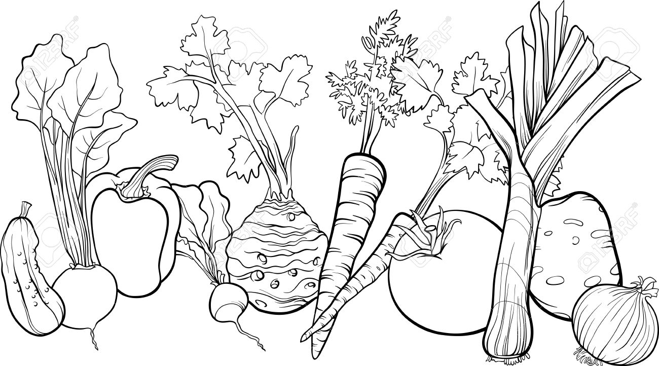 Coloring book pictures of vegetables - Black And White Cartoon Illustration Of Vegetables Food Object Big Group For Coloring Book Stock Vector