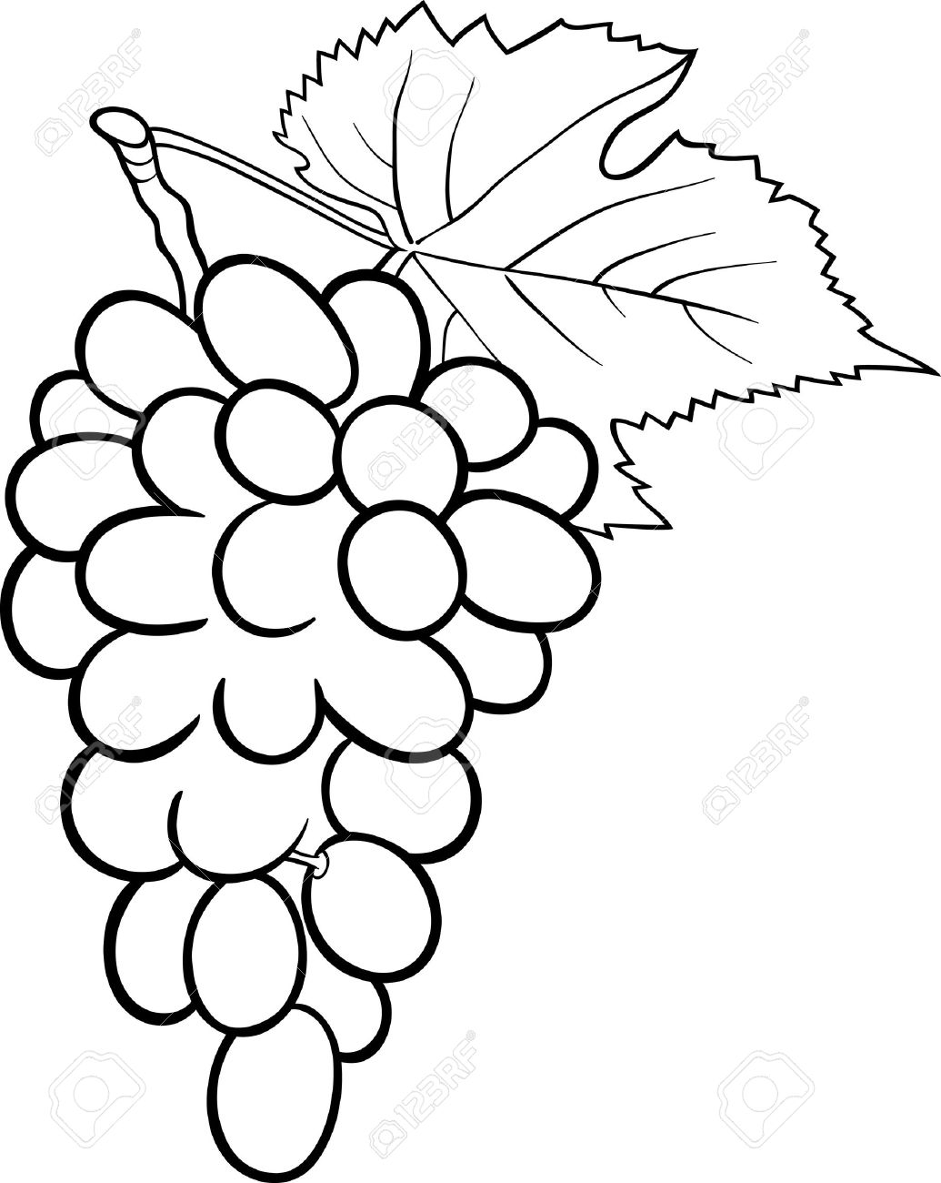 Black And White Cartoon Illustration Of Bunch Grapes Or Grapevine Fruit Food Object For Coloring