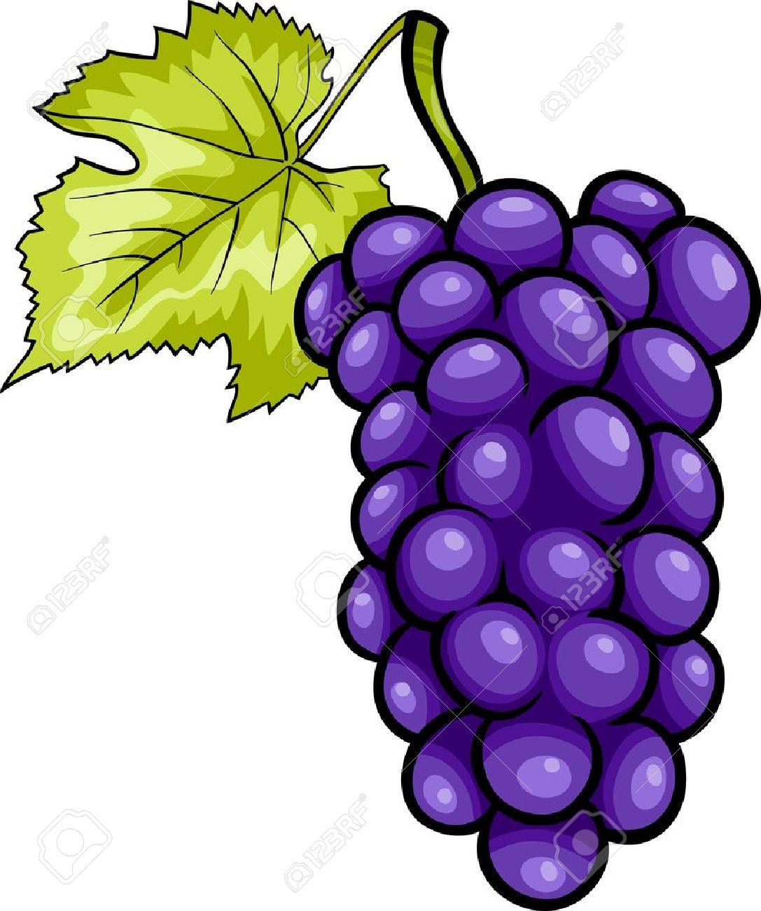 Ilustración De Dibujos Animados De Racimo De Uvas Azules O Púrpura O ...