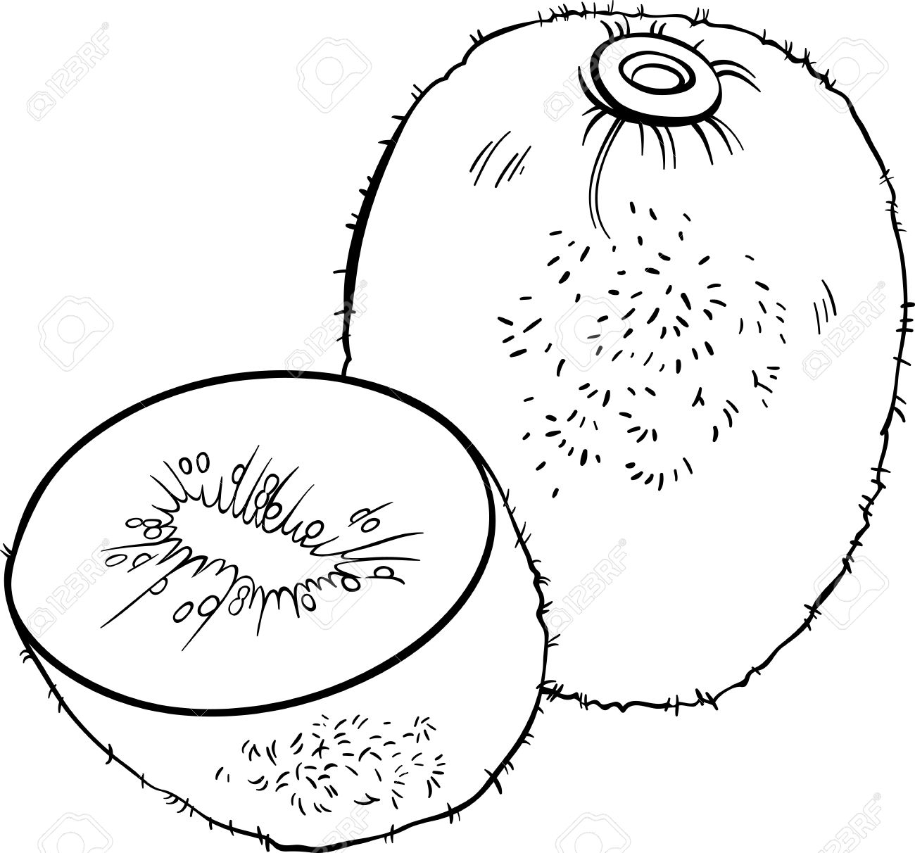 Kiwi Cartoon Drawing Black And White Cartoon