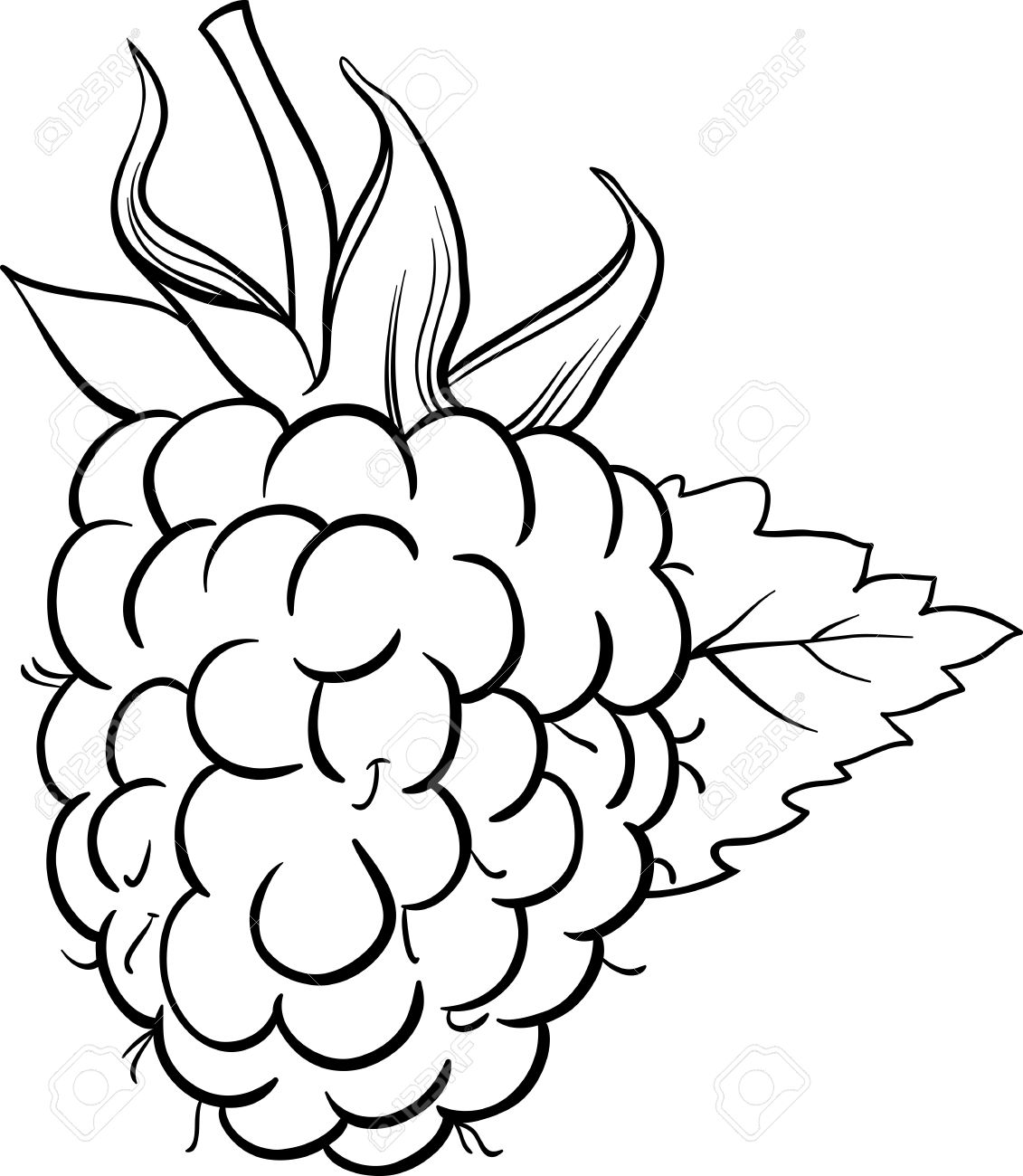 Black And White Cartoon Illustration Of Raspberry Berry Fruit