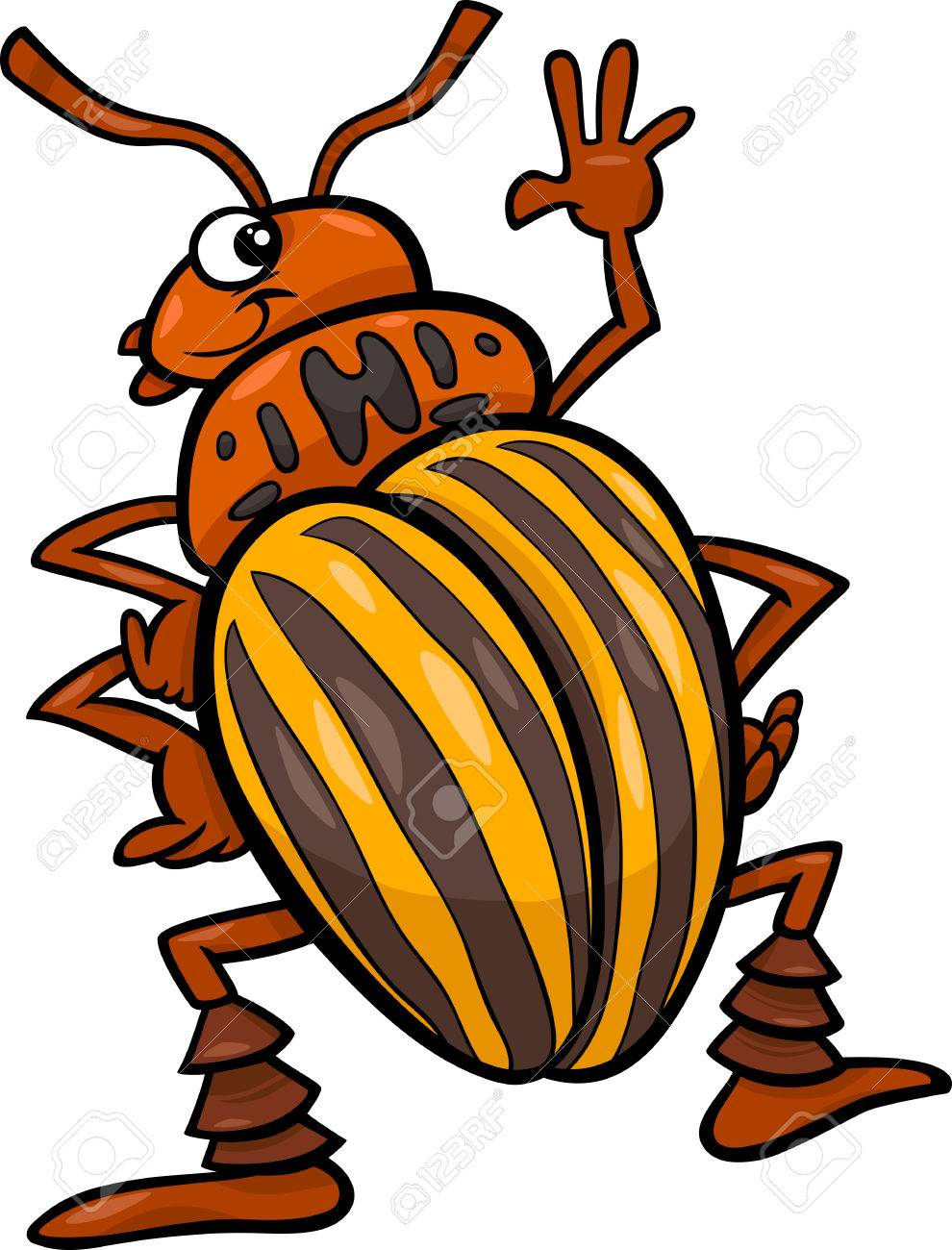 cartoon illustration of funny colorado potato beetle insect