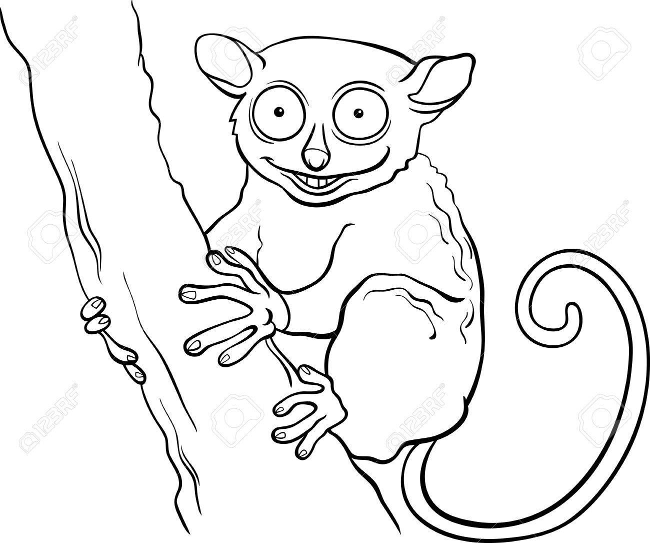 塗り絵の本の木の枝に面白いメガネザル動物の黒と白の漫画イラスト
