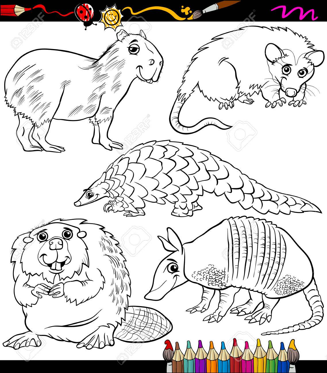 coloring book or page cartoon illustration of black and white